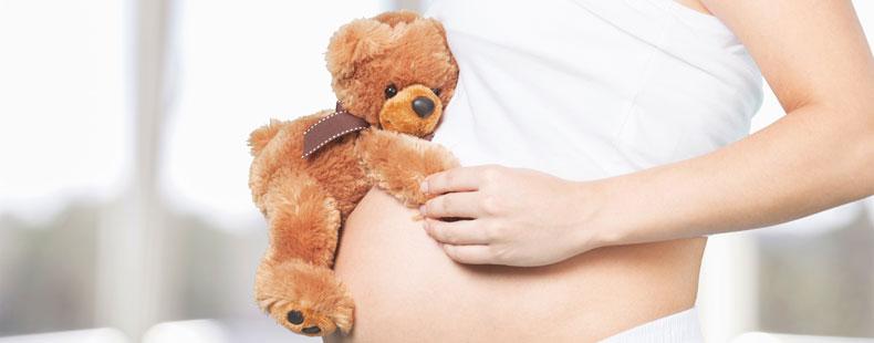 Schwangere Frau mit Teddy